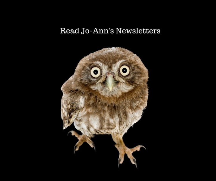 Read Jo-Ann's Newsletters