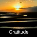 gratitude-button