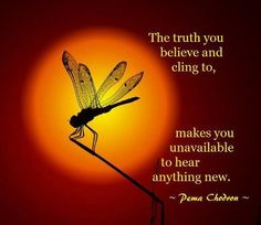Pema Chodron Quotes Simple Pema Chodron  Joann Carson